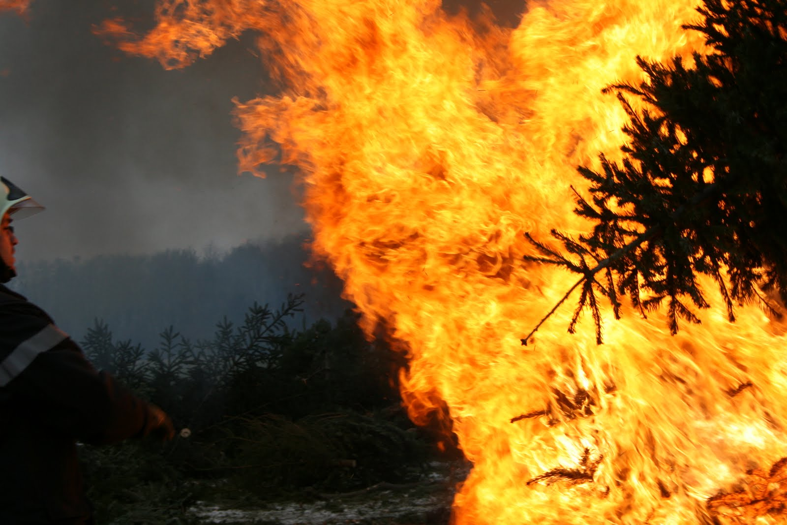 click to play this smilebox slideshow christmas tree burning