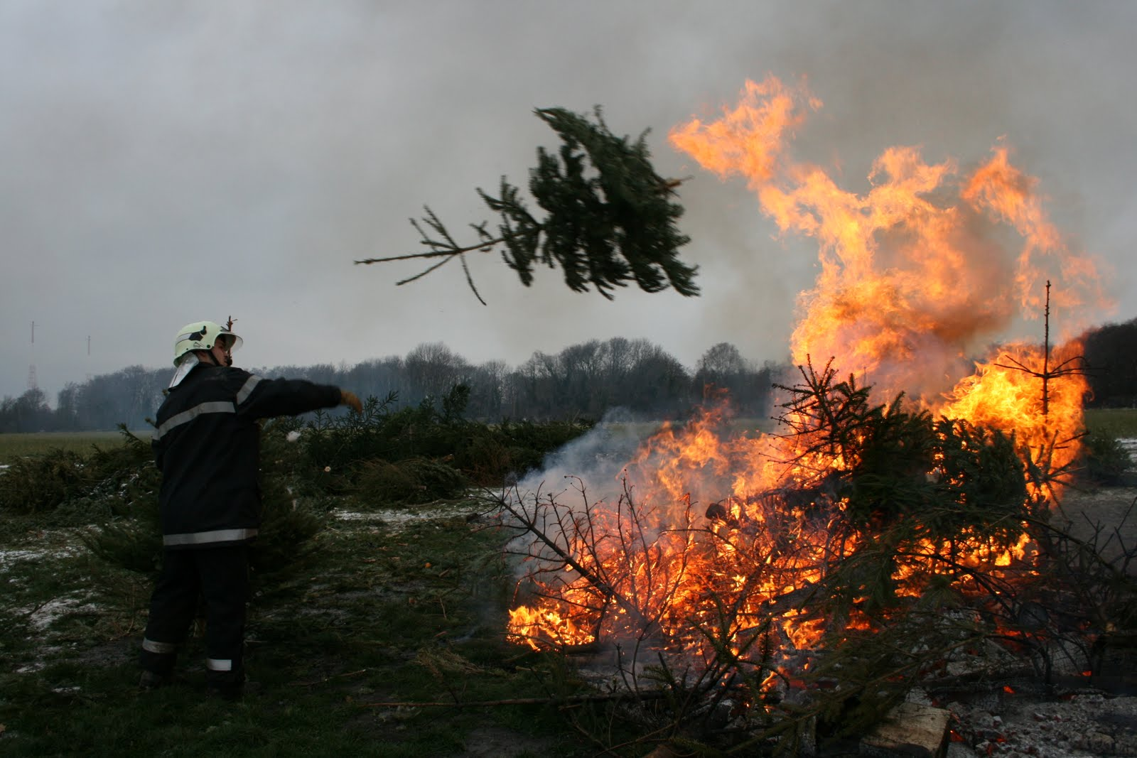 Burning Christmas Tree.Cooking Sausages And Burning The Trees In Gland Living In